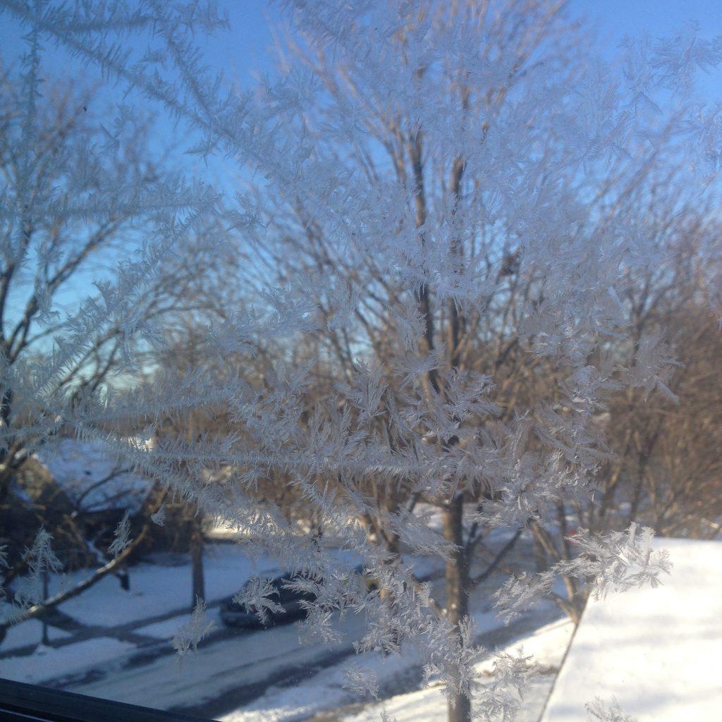 frozen patterns on window