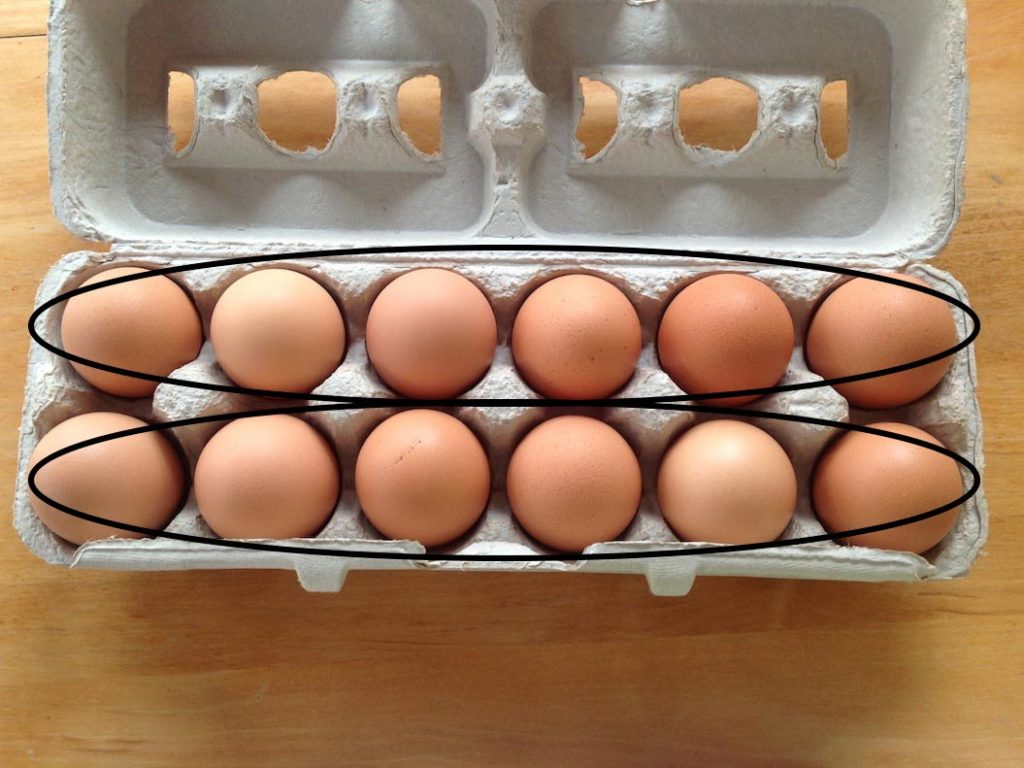 carton of eggs with rows of eggs circled